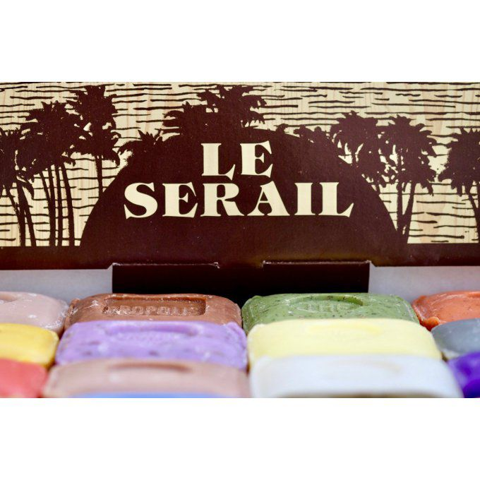 savon-algue-100gr-le-serail-mgr-distribution-2.jpg
